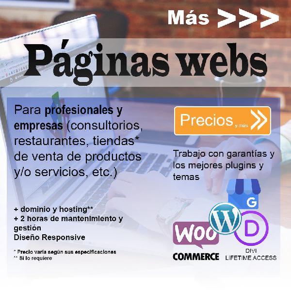 Páginas webs wordpress | asesoría y garantía