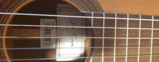Guitarra josé torres jtc-30