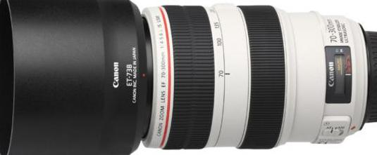 Canon ef 70-300 mm f4-5.6 l is usm (canon)