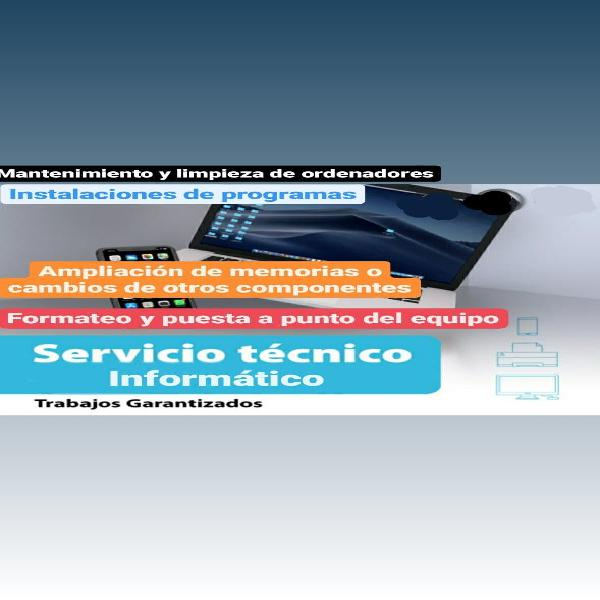 Servicios técnicos informático
