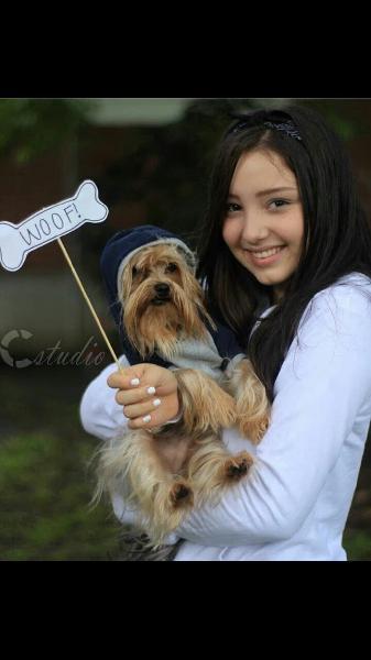 Servicio de paseo de mascotas y guardería