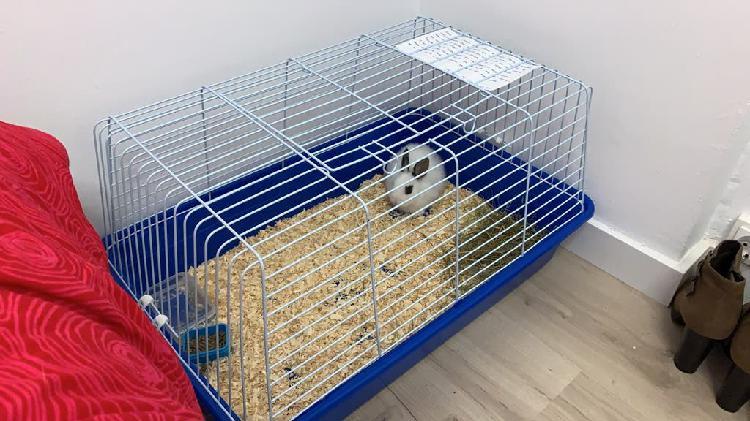 Jaula conejo hamster etc