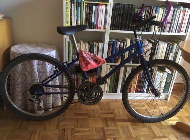 Mountain bike shimano