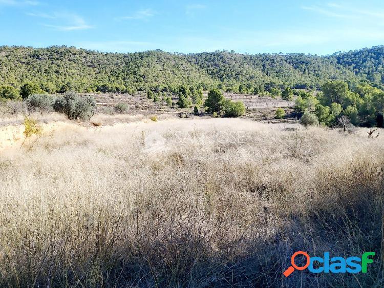 Inmobiliaria san jose vende terreno rural en monovar zona la romaneta