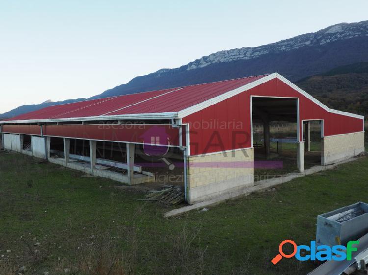 Finca rustica con establo y zona de almacen de reciente construccion en la comarca de la sakana en navarra