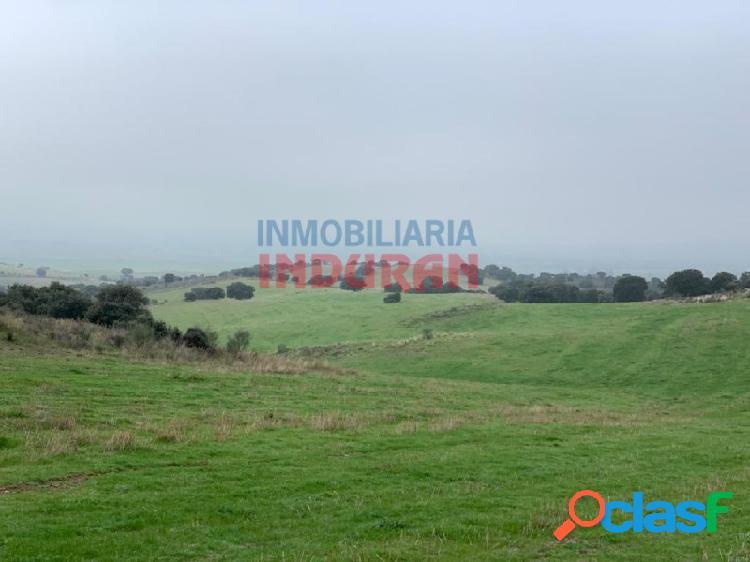 Finca rústica de 85 ha ideal para uso cinegético, para labor y para uso ganadero situada en término municipal de valdeverdeja (toledo)