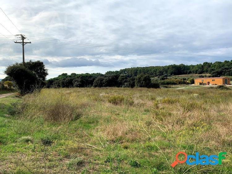 Terreno rústico en dos piezas en el camino del Mas Negre en Peratallada (Baix Empordà) 2