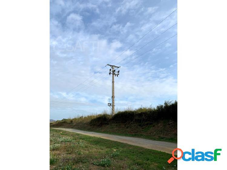 Terreno rústico en dos piezas en el camino del Mas Negre en Peratallada (Baix Empordà) 3