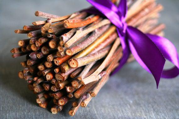 Crea palos, ramas de sauce. 4, 6 u 8 pulgadas de alto. elija