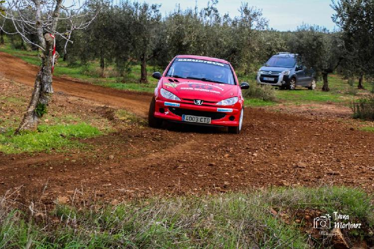 Peugeot 206 gti rally