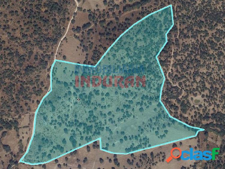 Finca rústica de 14,8 ha, con un molino de cereales en ruinas, situada en el término municipal de nuño gómez (toledo)