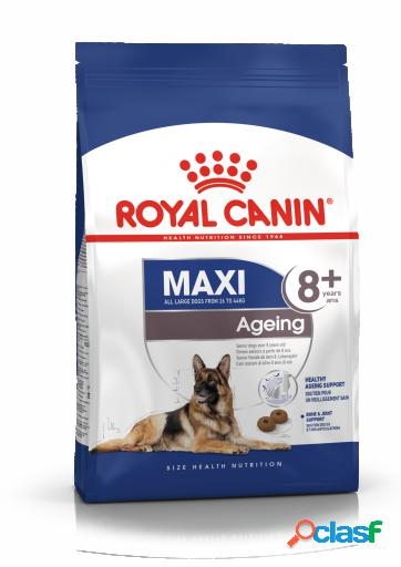 Pienso maxi ageing +8 15 kg royal canin
