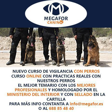Vigilancia con perros