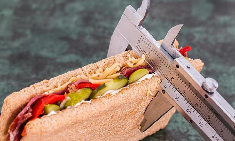 Elaboración de dietas