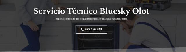 Servicio técnico bluesky olot 972396313