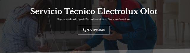 Servicio técnico electrolux olot 972396313