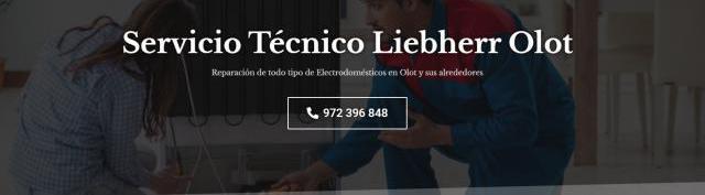 Servicio técnico liebherr olot 972396313