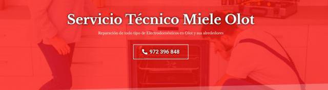 Servicio técnico miele olot 972396313