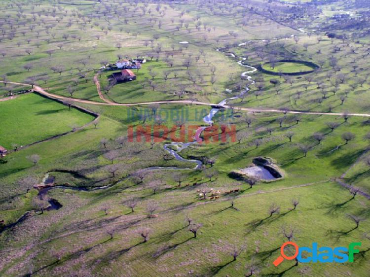 Finca de 50 ha, ideal para uso ganadero y para recreo, con una vivienda principal y varias construcciones situada en el término municipal de garciaz (cáceres)
