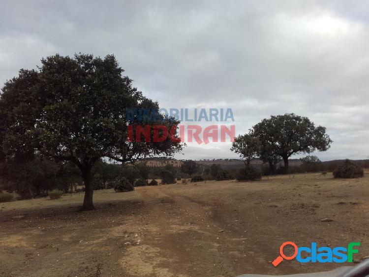 Finca de 64 ha ganadera y para recreo con coto social de caza menor situada en el término municipal de santiago de alcántara (cáceres)