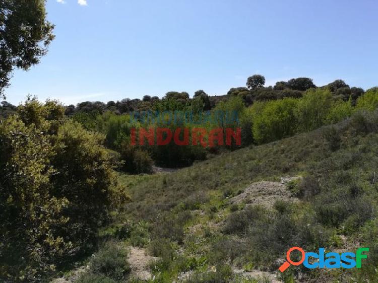 Finca rústica de 262 ha, ideal para uso cinegético, agrícola y para recreo, situada en el término municipal de villarrubia de santiago (toledo)