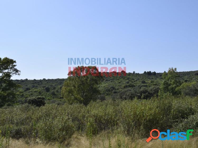 Finca rústica de 390 ha, ideal para uso cinegético y agrícola, situada en el término municipal de logrosán (cáceres)
