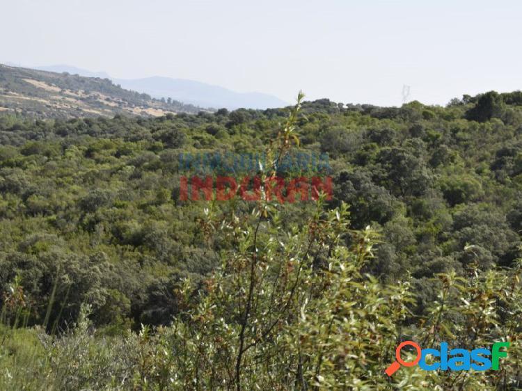Finca rústica de 390 ha, ideal para uso cinegético y agrícola, situada en el término municipal de Logrosán (Cáceres) 1