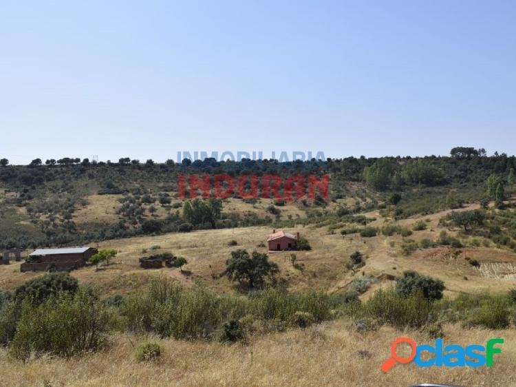 Finca rústica de 390 ha, ideal para uso cinegético y agrícola, situada en el término municipal de Logrosán (Cáceres) 3