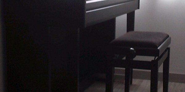 Piano digital thomann dp7-u