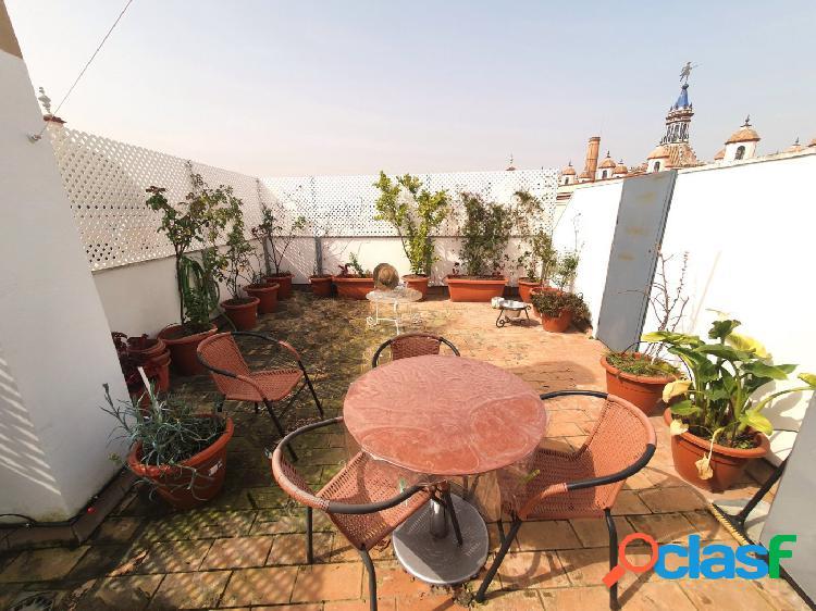Piso con gran terraza y vistas a giralda