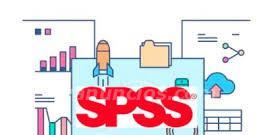 Docencia on line del programa estadístico spss, máster y