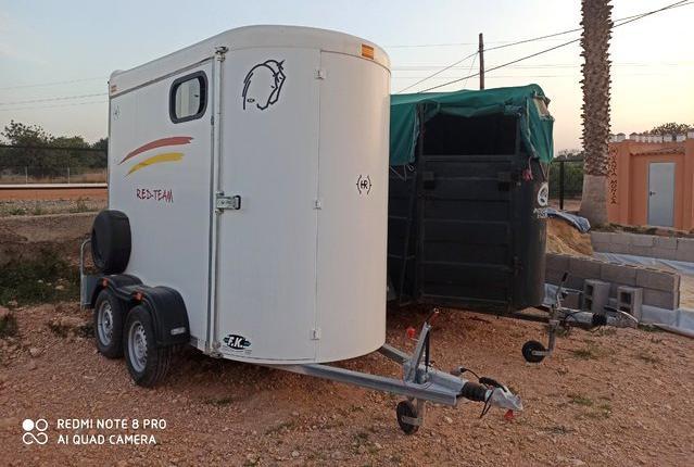 Transporte de caballos en valencia