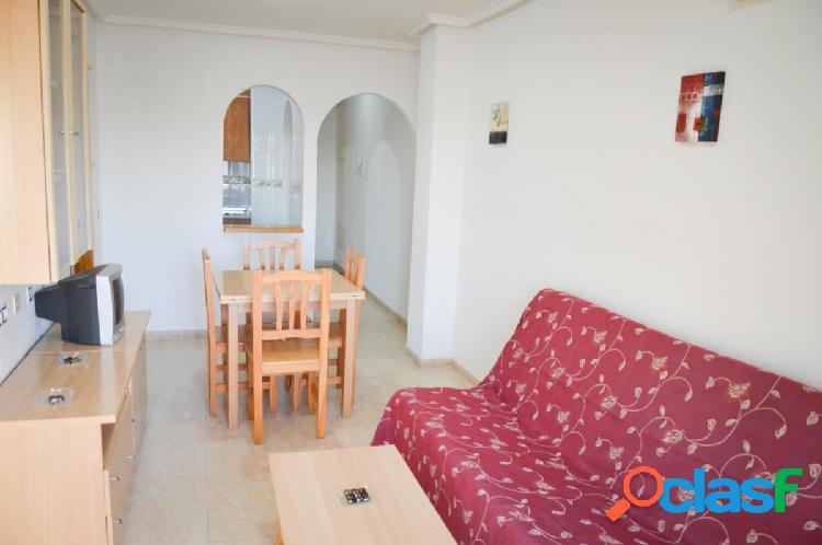 Alquiler piso de dos dormitorios con piscina en Torrevieja, a 600 metros de la playa 3