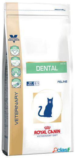 Pienso Feline Dental 1.5 Kg Royal Canin