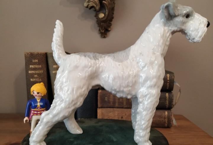 Fox terrier porcelana