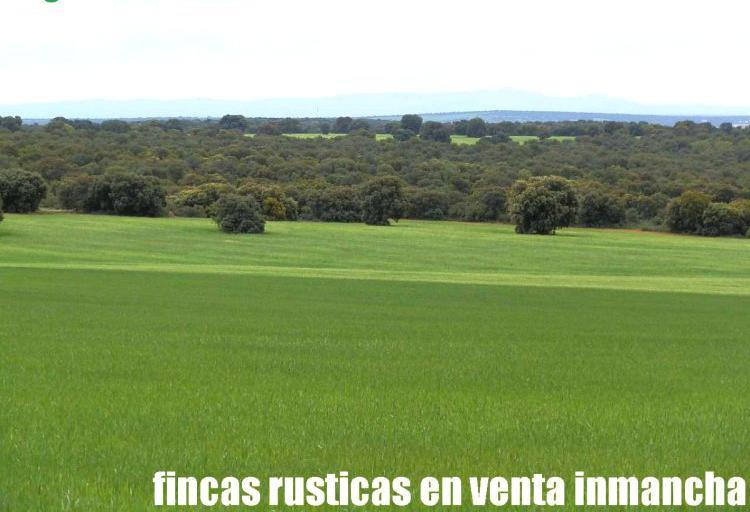Venta de Finca de caza con labor y monte en Albacete