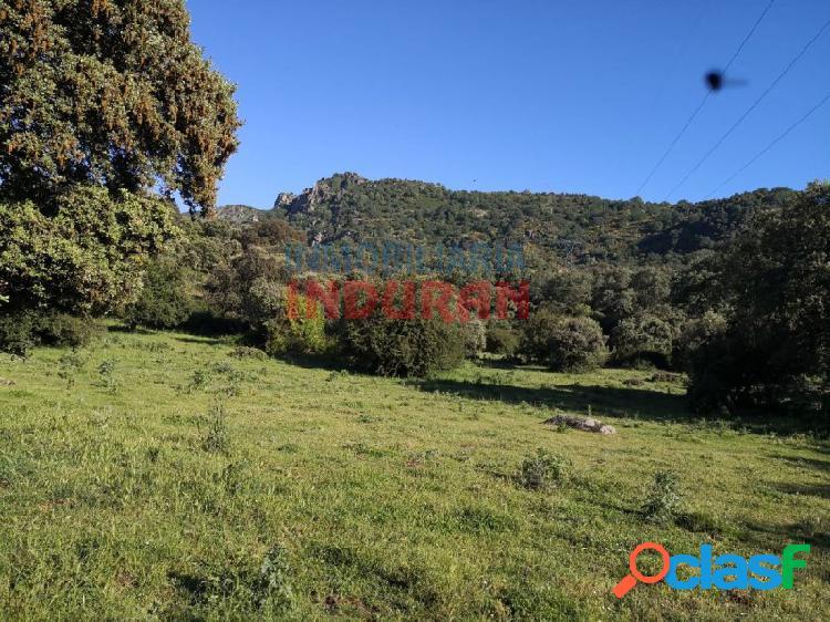 Finca rústica de 150 ha, poblada de encinas, situada en el valle del jerte en el término municipal de casas del castañar (cáceres)