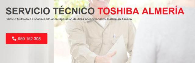 Servicio técnico toshiba almeria 950206887