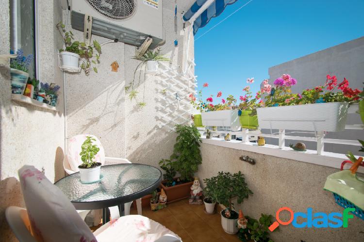 Apartamento reformado en torrevieja zona plaza de calvario/ el molino