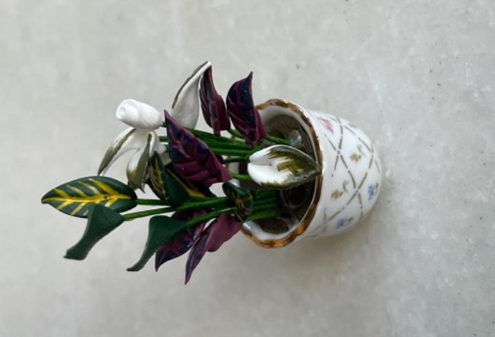 Maceta con planta de reutter porcelana, para casa de