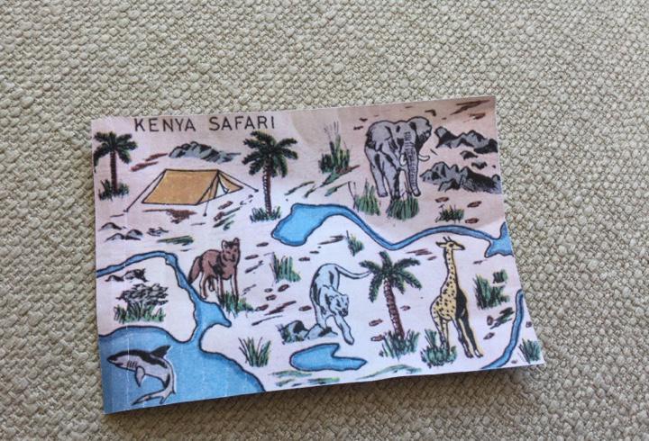 Plano safari madelman reproducción