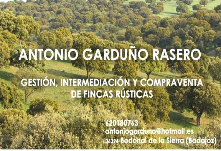 Compra de Finca con dehesa en Badajoz