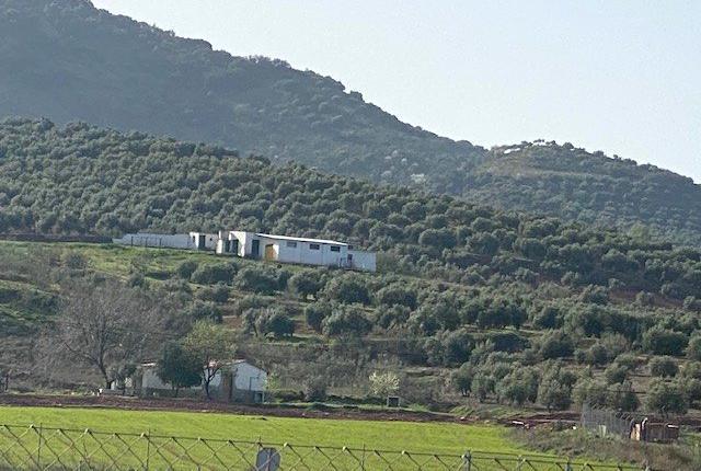 Venta de Finca de recreo en Jaén