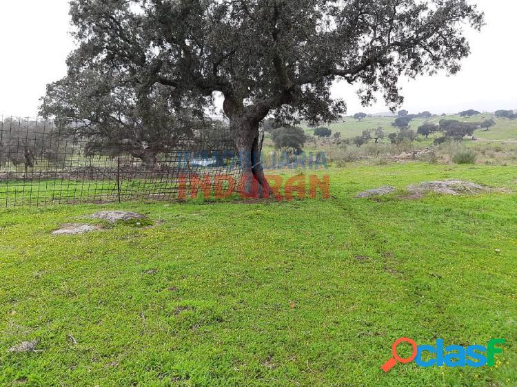 Finca rústica de 30 ha situada en el término municipal de villar del pedroso (cáceres)