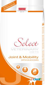 Veterinary diets joint&mobility 10 kg picart