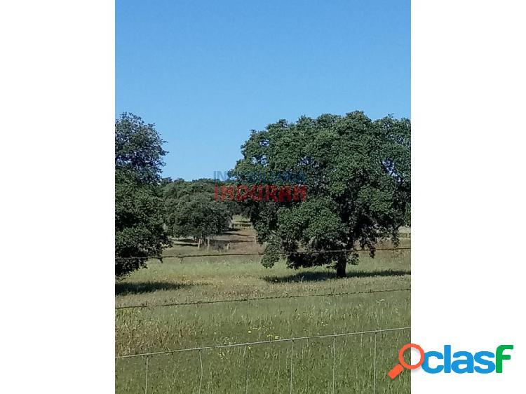 Finca ganadera de 9,3 ha poblada de encinas centenarias, tiene varias construcciones y corrales y está situada en el término municipal de alcolea de tajo (toledo)