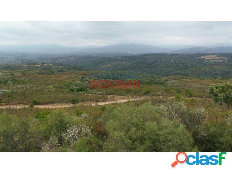 Finca rústica de 555 ha, ideal para uso cinegético y ganadero, con varios inmuebles situada en el término municipal de cuacos de yuste (cáceres)