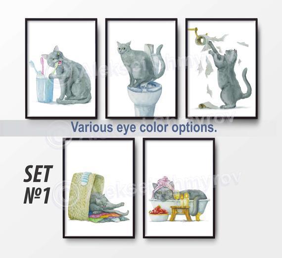 Tiempo de baño y tiempo de baño british gray cat set de 5.