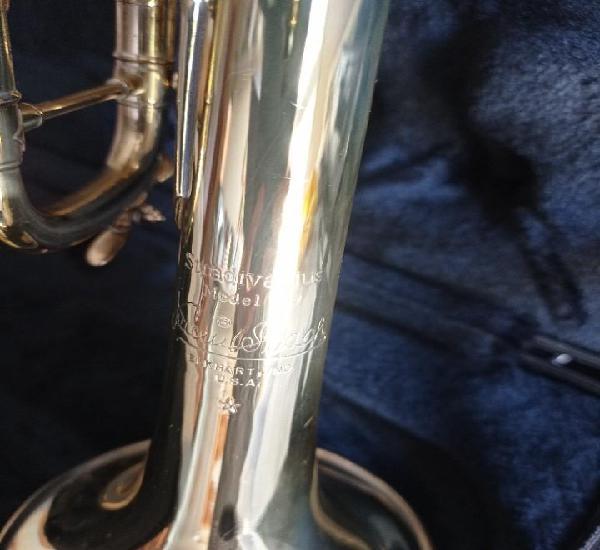 Trompeta gama alta stradivarius