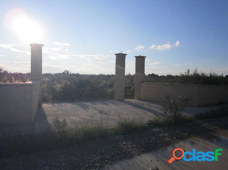 Parcela, a la venta, en Elche, Partida Torrellano bajo-Altet